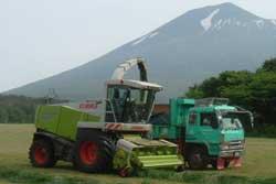 大型ダンプが伴走、牧草を運搬する